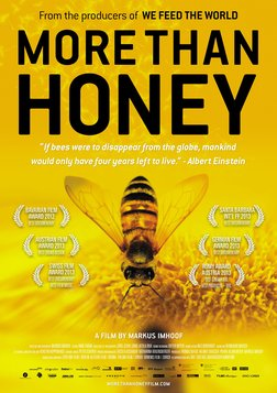 More Than Honey