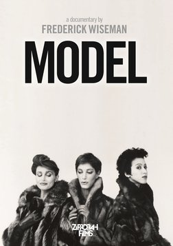 Model - An Inside Look of the Modeling Profession