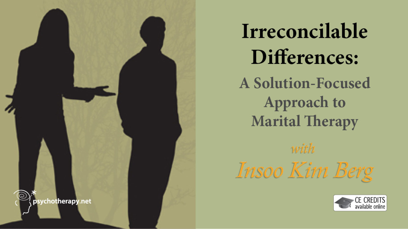 Irreconcilable Differences - A Solution-Focused Approach to Marital Therapy with Insoo Kim Berg
