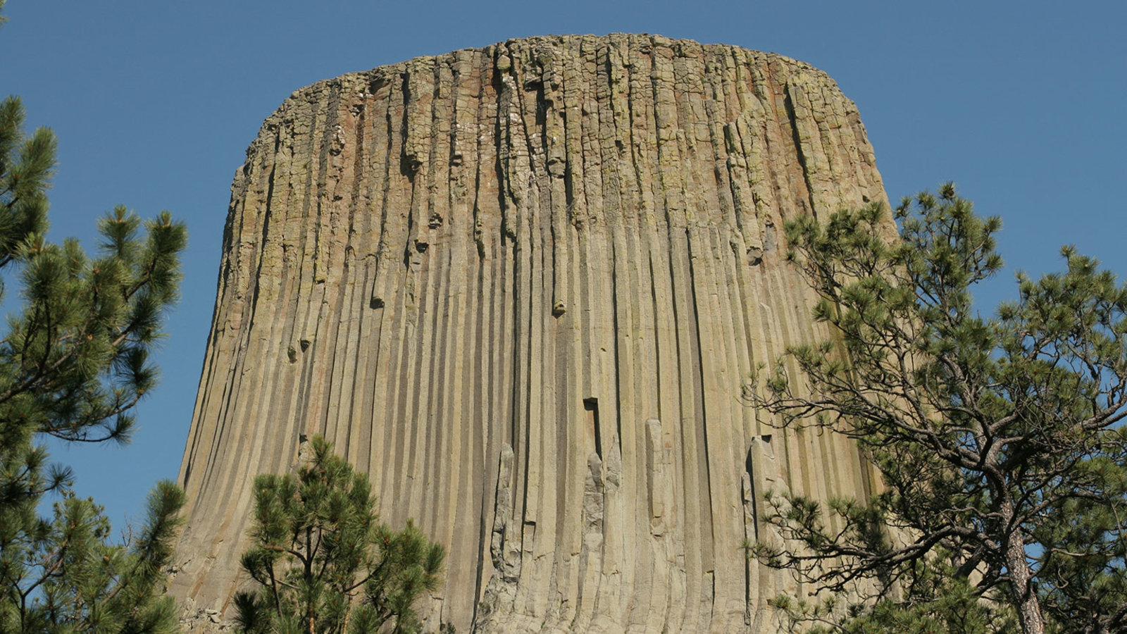 Devils Tower—Igneous Enigmas