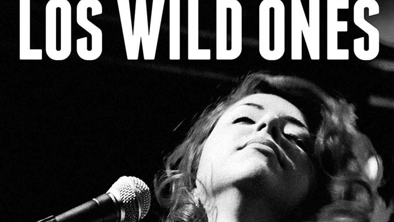 Los Wild Ones - The Musicians of Wild Records
