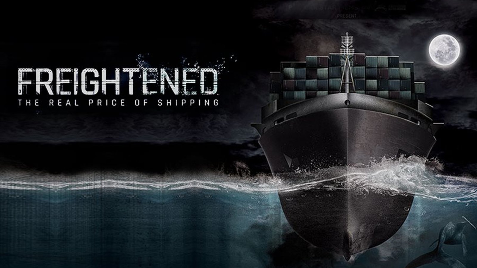 Freightened - The Real Price of Shipping