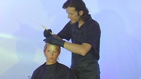 Watch Platform Artistry: Advanced Hair Color Collection now | Kanopy