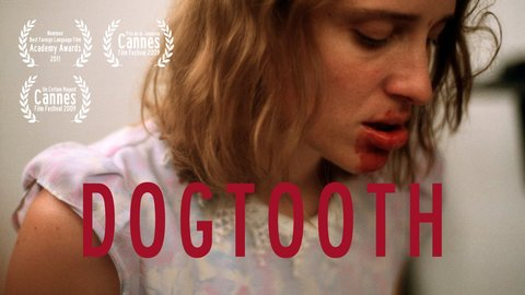 dogtooth (2009) free download