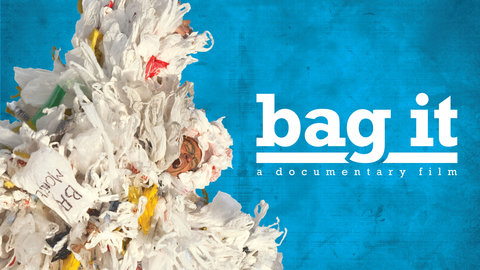 Image result for bag it is your life too plastic