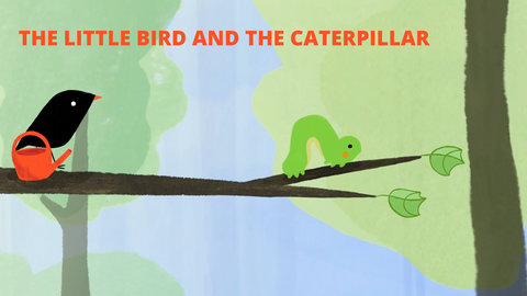 little bird and caterpillar cover
