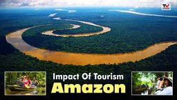 Impact of Tourism: Amazon