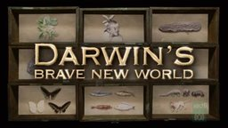 Darwin's Brave New World