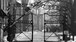 The Holocaust: What The Allies Knew