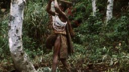 To Find the Baruya Story - An Anthropologist at Work with a New Guinea Tribe