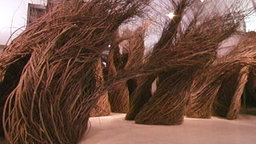 Patrick Dougherty: Twisted Logic