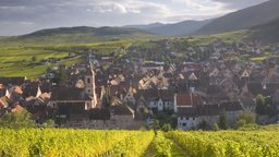 French Regions: Burgundy and Alsace
