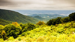 Shenandoah: The Collision of Old Continents