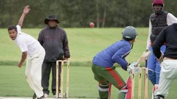 Cricket and Parc-Ex: A Love Story - Immigrants and Sports in a Vibrant Canadian Neighbourhood