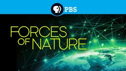 Forces of Nature - How We Experience Earth's Natural Forces