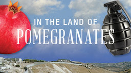 In the Land of Pomegranates - Stories of Israeli and Palestinian Youth