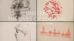 Unseen: The Lives of Looking - Visually Perceiving the World Around Us