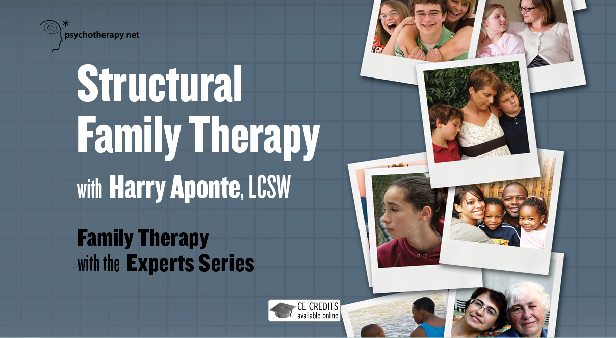 the structural family therapy on the family 2018-8-23 therapy is action oriented the therapist actively intervenes (via the techniques previously described) to change the actual behavioral transactions that occur among family members in order to reorganize the family structure.